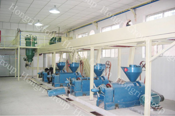 Oil Pressing Technology & Oil Press Machine